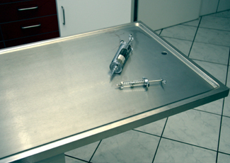 Shaumburg, IL Stainless Steel Table